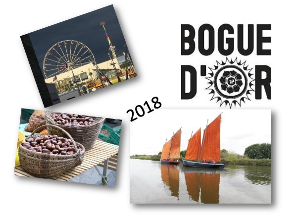 Bogue d'or 2018